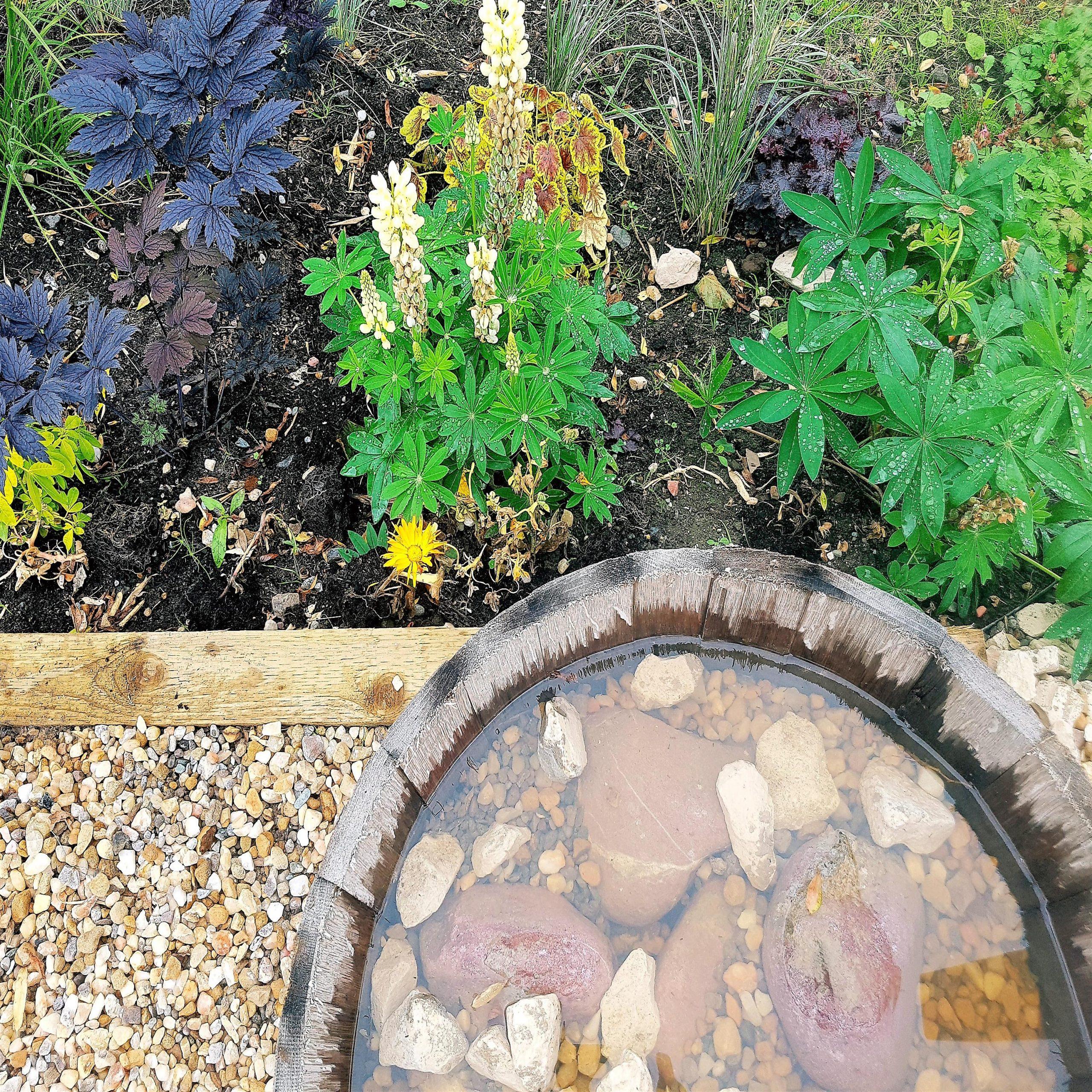 COMMUNITY GARDEN - Dear Green Space | Garden Design | Glasgow